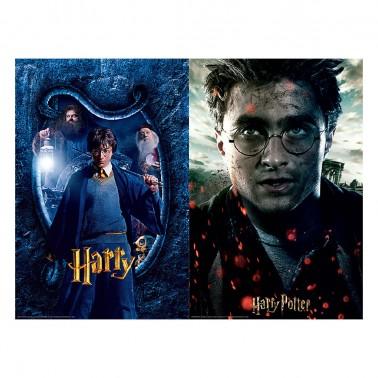 Puzzle 3D-Rasca Harry Potter 150 piezas